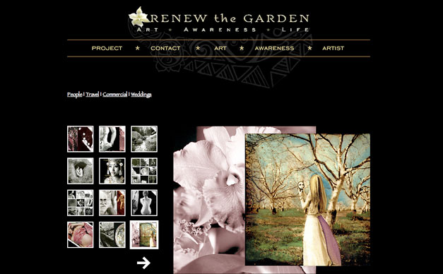 Artist Gallery Website Design Blue Lotus Mediablue Lotus